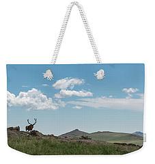 Rocky Mountain Elk Weekender Tote Bag by Sharon Seaward
