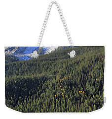 Weekender Tote Bag featuring the photograph Rocky Mountain Evergreen Landscape by Dan Sproul