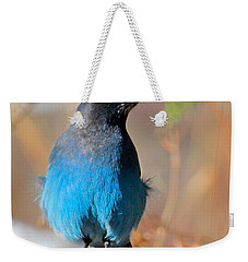 Rocky Mountain Steller's Jay Weekender Tote Bag