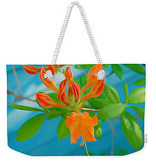 Weekender Tote Bag featuring the photograph Romantic Skies Budding Azalea by Aimee L Maher Photography and Art Visit ALMGallerydotcom