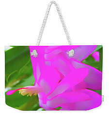 Weekender Tote Bag featuring the photograph Romantic Skies Christmas Cactus Flower by Aimee L Maher Photography and Art Visit ALMGallerydotcom