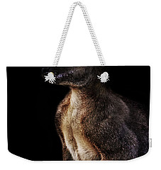 Roo Weekender Tote Bag by Martin Newman