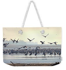 Weekender Tote Bag featuring the photograph Roosting On The Platte by Susan Rissi Tregoning