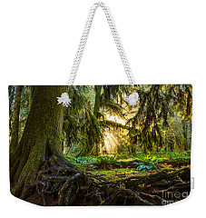 Roots And Light Weekender Tote Bag