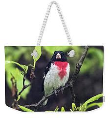 Rose-breasted Grosbeak On Tree Branch Weekender Tote Bag