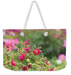 Weekender Tote Bag featuring the photograph Rose Garden Promise by Kim Hojnacki