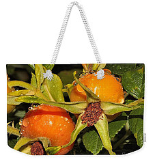 Weekender Tote Bag featuring the photograph Rose Hips by Debbie Stahre