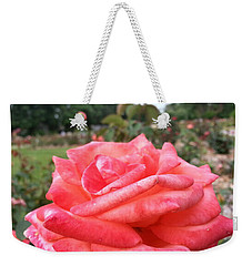 Weekender Tote Bag featuring the photograph Rose Of Sharon - Faith by Robert Knight