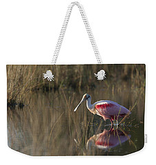 Roseate Spoonbill In Morning Light Weekender Tote Bag