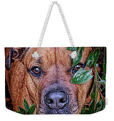 Weekender Tote Bag featuring the photograph Rosebud by Lewis Mann
