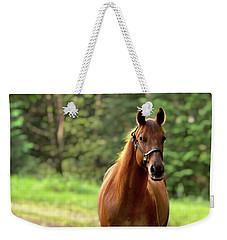 Rosey On The Road Weekender Tote Bag