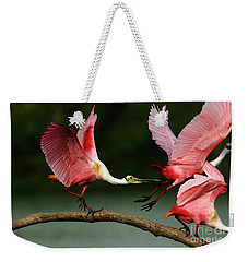 Rosiette Spoonbills Lord Of The Branch Weekender Tote Bag by Bob Christopher