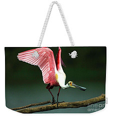 Rosiette Spoonbill Texas Weekender Tote Bag by Bob Christopher