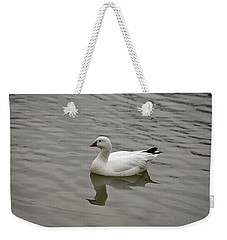 Weekender Tote Bag featuring the photograph Ross's Goose by Sandy Keeton