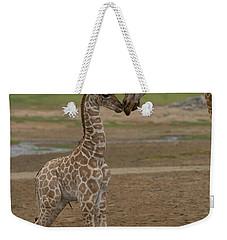 Weekender Tote Bag featuring the photograph Rothschild Giraffe Giraffa by San Diego Zoo