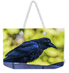Weekender Tote Bag featuring the photograph Rough Crow  by Jonny D