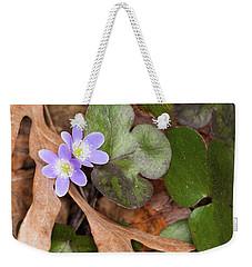 Round-lobed Hepatica Weekender Tote Bag