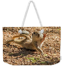 Round-tailed Ground Squirrel Stretch Weekender Tote Bag