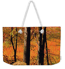 Round Valley State Park 3 Weekender Tote Bag by Raymond Salani III
