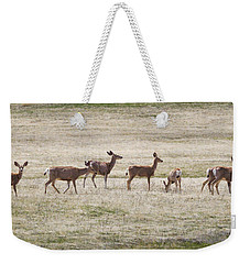 Row Of Deer  Weekender Tote Bag