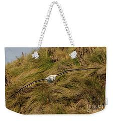 Royal Albatross 2 Weekender Tote Bag by Werner Padarin