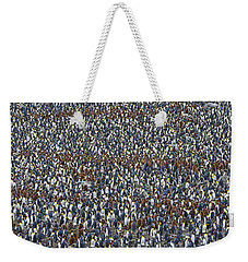 Weekender Tote Bag featuring the photograph Royal Layers by Tony Beck