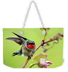 Weekender Tote Bag featuring the photograph Ruby Garden Hummingbird by Christina Rollo