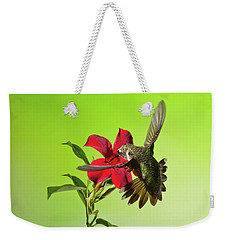 Ruby-throated Hummingbird On Mandavilla Flower Weekender Tote Bag