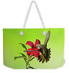 Weekender Tote Bag featuring the photograph Ruby-throated Hummingbird On Mandavilla Flower by Lara Ellis