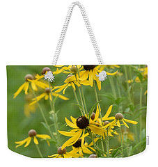 Weekender Tote Bag featuring the photograph Rudbeckia Hirta by Maria Urso