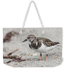 Ruddy Turnstone On The Beach Weekender Tote Bag