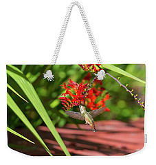 Rufous Hummingbird Feeding On Flower Nectar Weekender Tote Bag