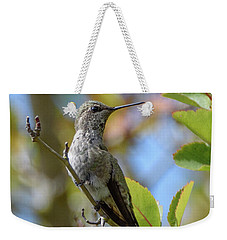 Rufous Hummingbird Weekender Tote Bag by Keith Boone