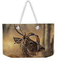 Rufous Treepies Weekender Tote Bag