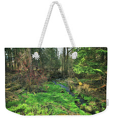 Running Creek In Woods - Spring At Retzer Nature Center Weekender Tote Bag by Jennifer Rondinelli Reilly - Fine Art Photography