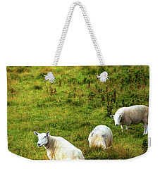 Weekender Tote Bag featuring the photograph Rural Idyll. Wicklow. Ireland by Jenny Rainbow