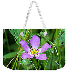 Sabatia Weekender Tote Bag by Kenneth Albin