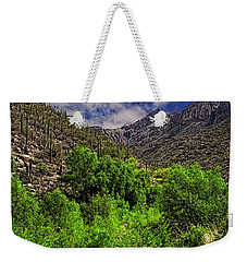 Weekender Tote Bag featuring the photograph Sabino Canyon H33 by Mark Myhaver