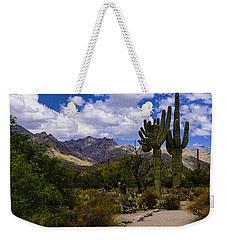 Weekender Tote Bag featuring the photograph Sabino Canyon No4 by Mark Myhaver