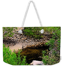 Weekender Tote Bag featuring the photograph Sabino Canyon Op44 by Mark Myhaver