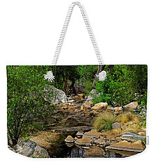 Weekender Tote Bag featuring the photograph Sabino Canyon V49 by Mark Myhaver