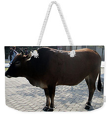 Weekender Tote Bag featuring the photograph Sacred Cow 3 by Randall Weidner