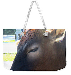 Weekender Tote Bag featuring the photograph Sacred Cow 4 by Randall Weidner