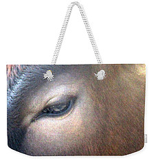 Weekender Tote Bag featuring the photograph Sacred Cow 5 by Randall Weidner