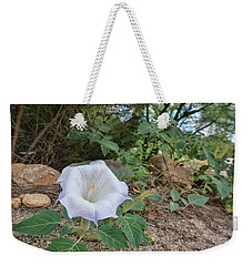 Weekender Tote Bag featuring the photograph Sacred Datura by Dan McManus
