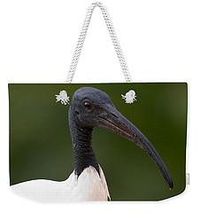 Sacred Ibis Weekender Tote Bag by Jouko Lehto