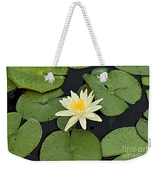 Weekender Tote Bag featuring the photograph Sacred Lotus by James Fannin