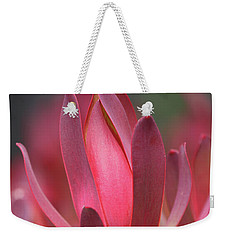 Weekender Tote Bag featuring the photograph Safari Sunset 2 by Chris Armytage