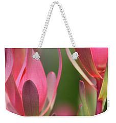Safari Sunset 3 Weekender Tote Bag