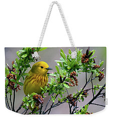 Safe Place Weekender Tote Bag